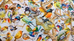 Bird Power (Detail);Watercolour on acid free paper;Size – 48 X 36 inches